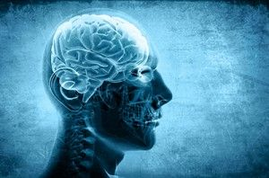 Artistic Profile of a Human Head Xray - TBI May Contribute to Premature Brain Aging